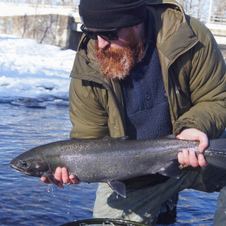 Salmon River Steelhead Fly Fishing Guide