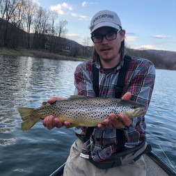 West Branch of the Delaware Brown Trout