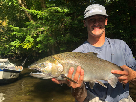 Salmon River 2019 Mid Salmon Season Update