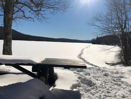 Trout Talks: Ice Out ADK Brook Trout