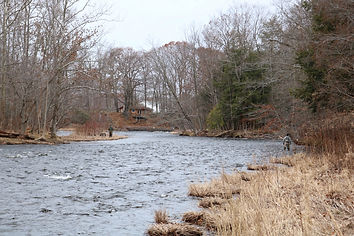 Salmon River, Pulaski NY