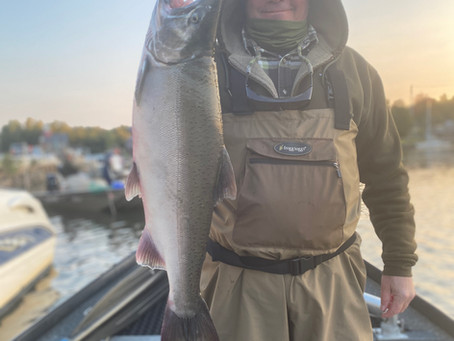 Salmon River Steelhead Fishing - Jan. 2021