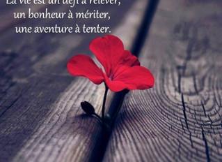 C'est la Vie...oh Oui !!!