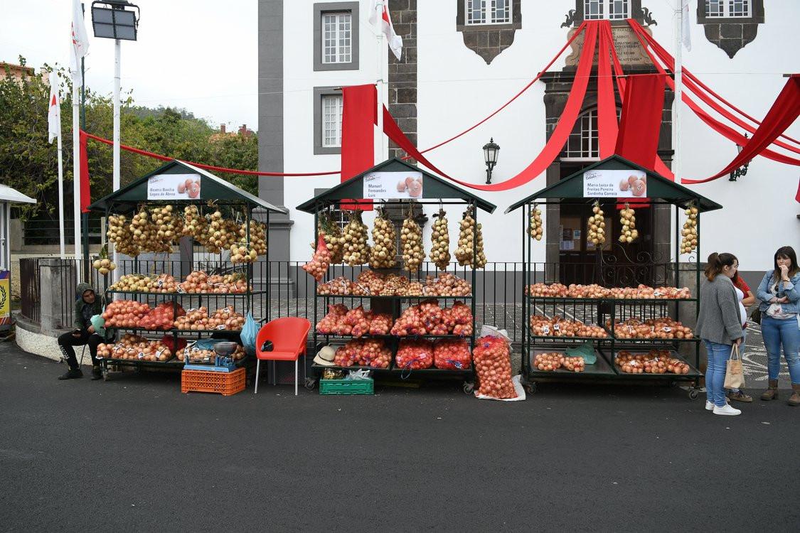 FESTA DA CEBOLA