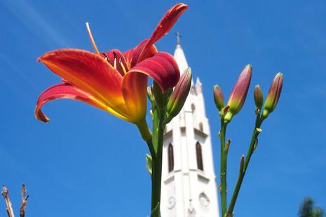 Santuário do Caraça é uma ótima opção para aproveitar os dias floridos de primavera