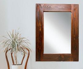 Amazonia Mirror