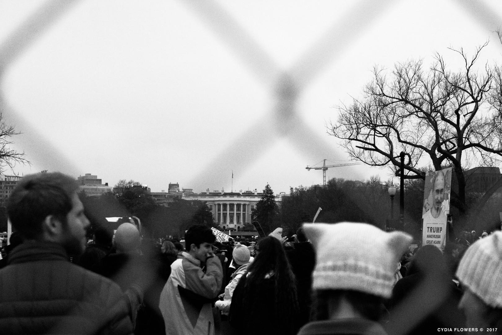 whitehouseprotest.jpg