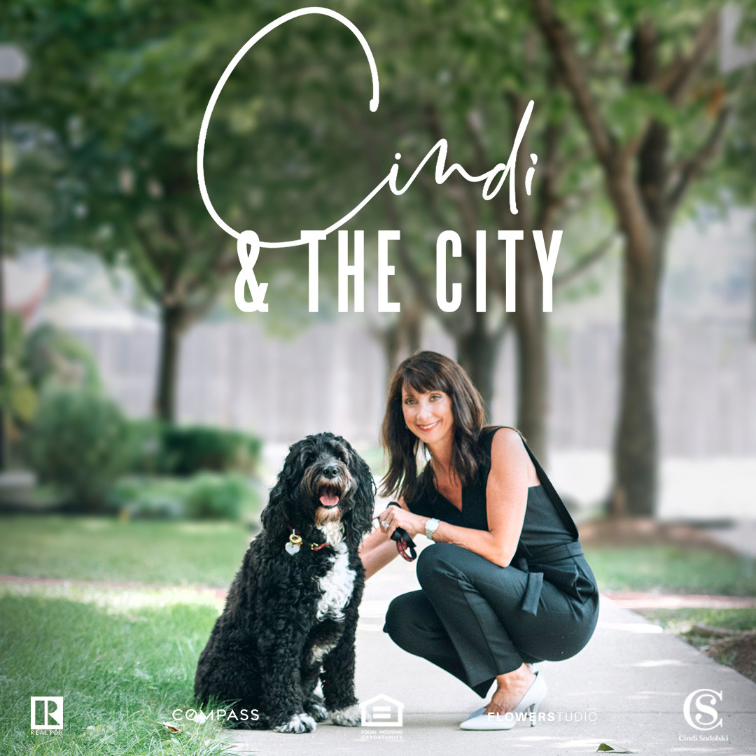 Cindi And The City Promo