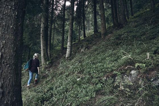 Chica de senderismo en la naturaleza