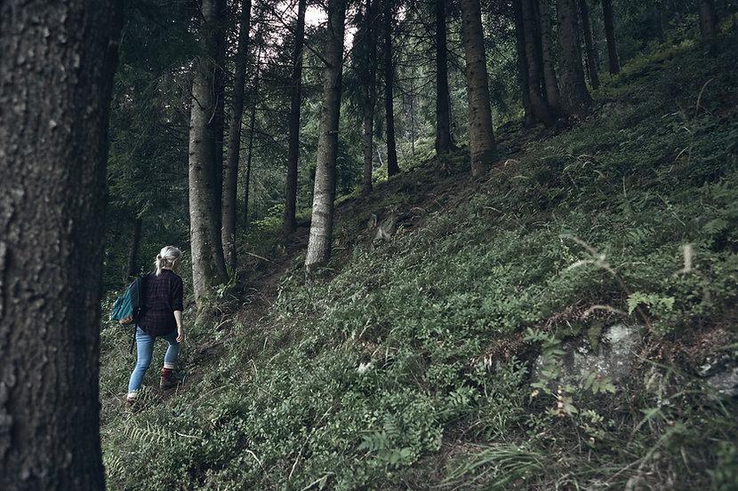 自然の中でのハイキング
