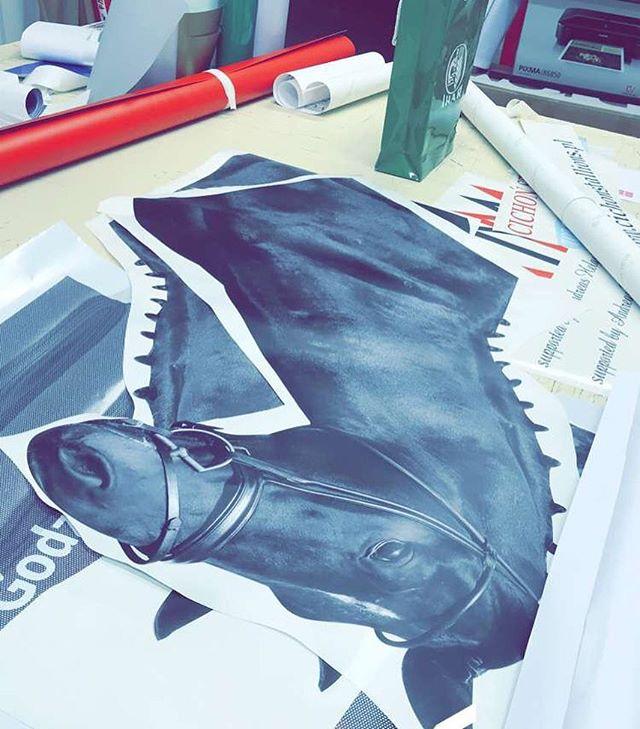 #oklejaniepojazdow #oklejanieslask #oklejaniereklamowe #oklejamy #carwrap #horse #konie #konik #cich