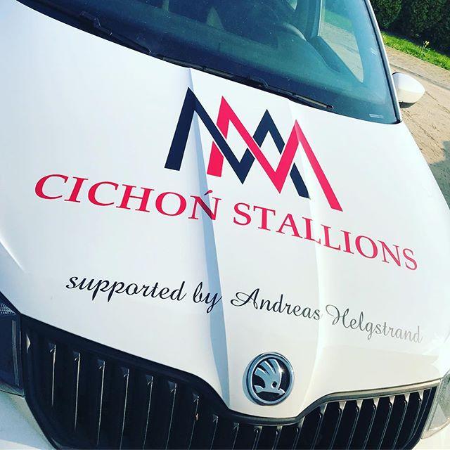 #carwrap #oklejanie #napisynasamochodach #logo #cichonstallions #oklejaniereklamowe #foliaploterowa