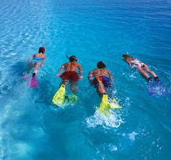 Skin Diving & Snorkeling