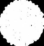Sheild Icon White.png