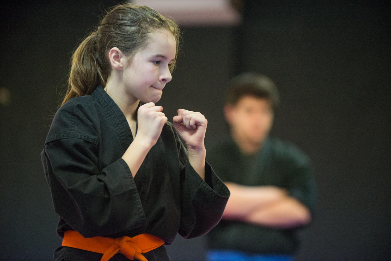 DA-examen-ceinture-bujutsu-2016-41