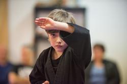 DA-examen-ceinture-bujutsu-2016-48