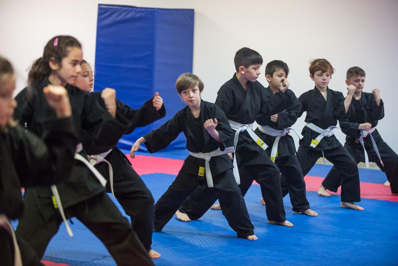 DA-examen-ceinture-bujutsu-2016-47