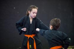 DA-examen-ceinture-bujutsu-2016-53