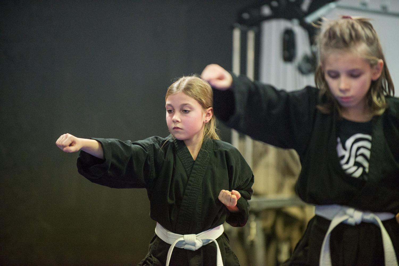 DA-examen-ceinture-bujutsu-2016-50