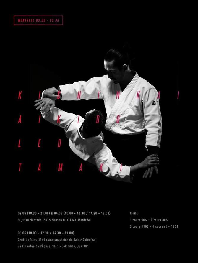 Séminaire d'aikido