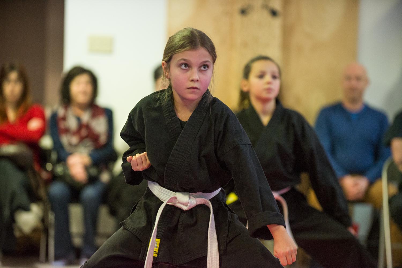 DA-examen-ceinture-bujutsu-2016-13