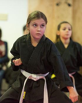 DA-examen-ceinture-bujutsu-2016-13.jpg