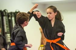 DA-examen-ceinture-bujutsu-2016-55