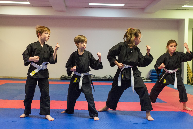 DA-examen-ceinture-bujutsu-2016-2