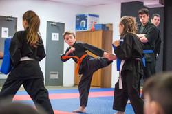 DA-examen-ceinture-bujutsu-2016-39