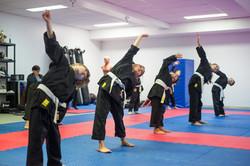 DA-examen-ceinture-bujutsu-2016-3