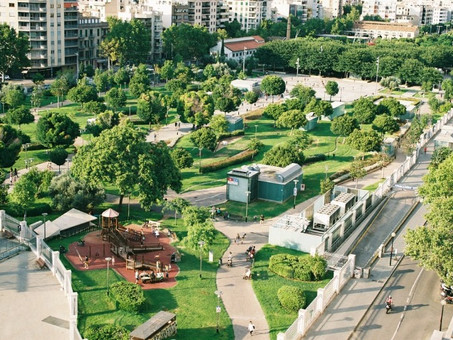 Planting the Road to Greener Cities - by Marijke DeWulf