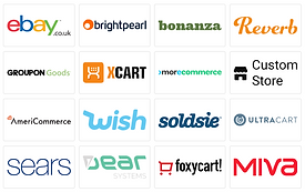 eCommerce Shopping Carts. eBay, brightpearl, bananza, reverb, groupon goods, xcart, morecommerce, custom store, americommerce, wish, soldsie, ultracart, sears, dear systems, foxycart, miva