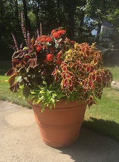 Planter1.jpg