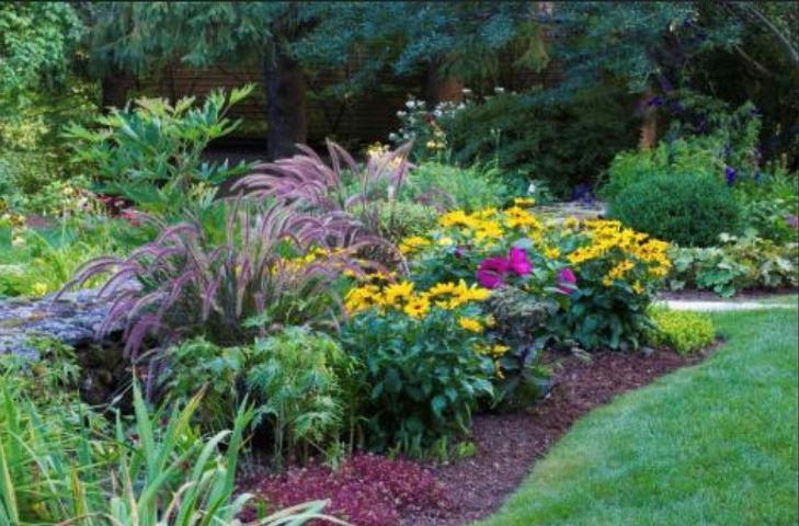 Perennial Garden1.jpg