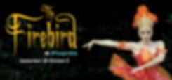 Firebird19_Web_980x460.NoYear.png