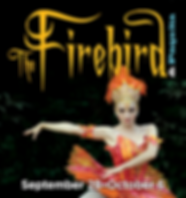 Firebird19_310x330.png