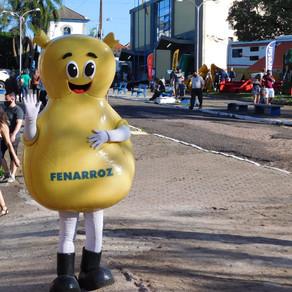 Fenarroz movimenta cerca de R$ 22 milhões em vendas