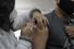 1ªs doses da vacina contra a Covid se esgotam em Cachoeira