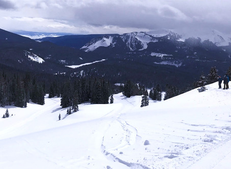 Private Ski Trips; Cat Ski, Heli-Ski and More