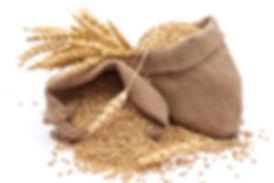 ζωοτροφες χονδρική εμπορία σιτάρι μπουλιας