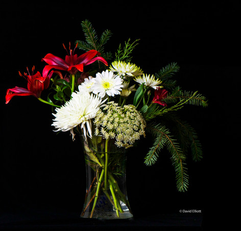 Christmas Flowers  CR.jpg