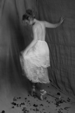 The Dressmaker's Room ix