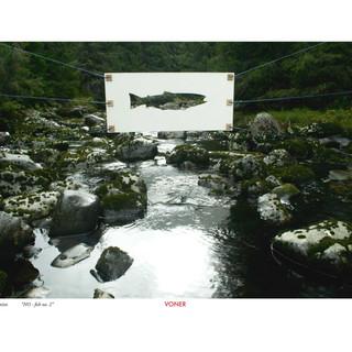 NO fish no. 2 A3 Artprint