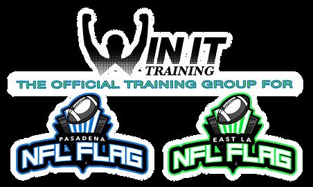 NFL Flag Logo Lockup copy.png
