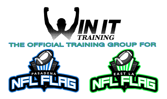 NFL Flag Logo Lockup copy.png