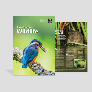 Magazine cover for Wildlife Trust BBOWT