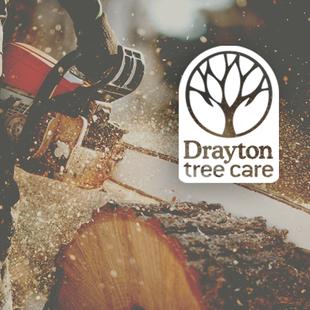 Drayton Tree Care logo design