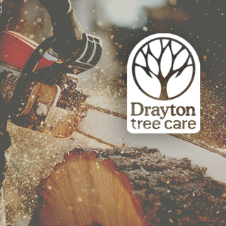 Drayton Tree Care logo design