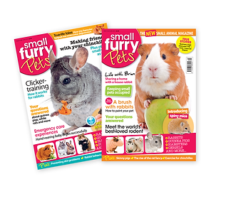 Small furry pets magazine cover