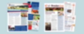 Newsletters Red Tractor Bowler Eggs